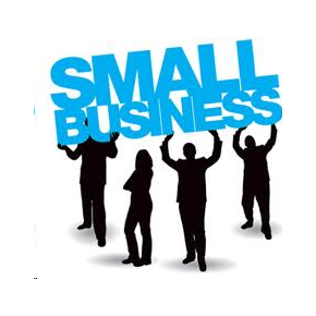 small business consulting powered by domainengines.com